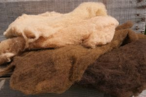 Dyed Wool in Shades of brown for needle felting
